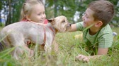 pooch : two cute preschoolers boy and girl are playing in a yard with small dog, lying in green grass Stock Footage