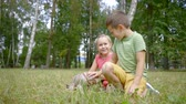 pooch : two funny little children, boy and girl, are stroking small dog in a park in summer, sitting on a grass