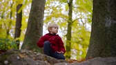 big leaf : cute little boy with blonde hair is sitting alone on big stones in forest in autumn day Stock Footage