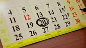 aylık : woman makes notes markers on the calendar. month planning Stok Video