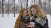 wintertime : Portrait of a two attractive blonde girls looking at smartphone being in the forest in witner. Stock Footage