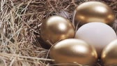 White egg and golden eggs. Eggs in close-up with slow panning Wideo