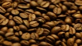 close up of raw coffee beans