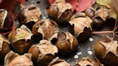 pan : Roast chestnuts with the characteristic cut Stock Footage