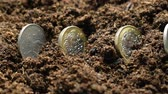British pound coins sown in the ground