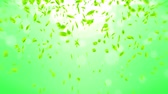 valószerű : Fresh Green Leaves Falling on Green Background, Loop Animation,
