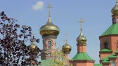 zmartwychwstanie : The golden domes of an orthodox church behind the trees Wideo