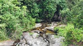 north stream : Mountain waterfall in the jungle
