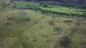 Aerial drone view of rural malaysia farmland Стоковые видеозаписи