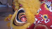 dragão : Lion dance in the Chinese New Year.