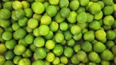 酸っぱい : Lime Citrus Fruits In Fruit Market