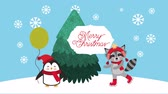 azevinho : merry christmas card with cute raccoon and penguin ,hd video animation