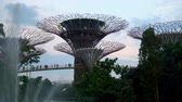 skywalk : Supertree Grove and Fountain During Sunset at Gardens by The Bay in Singapore