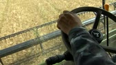 tarweveld : harvesters harvest wheat on the agricultural field