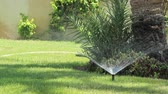 スプリンクラー : Irrigation equipment. Sprinkler spraying drops of water on the green grass in the garden. 動画素材