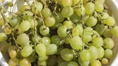 виноград : large bunches of grapes in the morning sun, green grapes close-up in a bowl served to the table