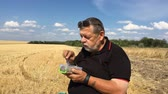 parný : Ukrainian senior farmer eating steamed vegetables sitting outdoor on a harvested wheat field Dostupné videozáznamy