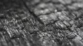 пожар : burned wood macro structure, sliding camera movement