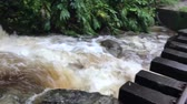 railway tracks pass above powerful water stream in tropical forest