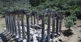 ephesus : Aerial View Of Historical Places - The Temple Of Zeus Lepsynos At Euromos Stock Footage