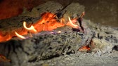 grate : wood burning in fireplace in slow motion closeup