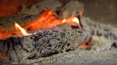 farmhouse : closeup of fire flames on burning wood logs in slow motion