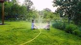 hosepipe : two little girls sitting on green lawn near working garden sprinkler Stock Footage
