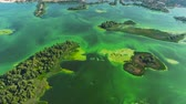 inquinamento acqua : aerial of wide river with green islands and green algae in water