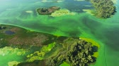 rebut : aerial of islands on wide river polluted with green algae Vidéos Libres De Droits