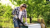fűrész : caucasian woman woodworker handsawing wooden plank in sunny orchard
