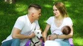 jack russel : Caring family with baby and dog spending leisure time in summer park