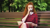 jovial : Amiable red haired reader relaxing in park Stock Footage