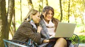 jovial : Successful business women using laptop in garden