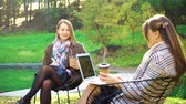 Young women having business meeting in park Stock Footage