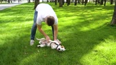 Happy dog owner massaging belly of Jack Russell Terrier on green lawn