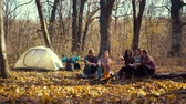 Young campers talking near campfire in autumn forest