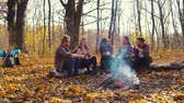 Group of tourists drinking hot tea near campfire in forest