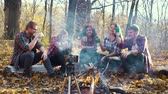 Travel bloggers sitting by fire and recording video with smartphone on tripod Stock Footage