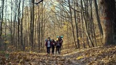 Cheerful friends hiking in beautiful autumn forest