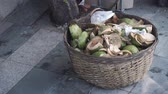 mouse : Mouse run to eat in a basket with coconut waste. Stock Footage