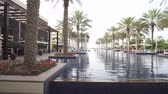 bangalô : Abu Dhabi, UAE - April 04, 2018: Pool with palm trees in the Park Hyatt Abu Dhabi Hotel on the island of Saadiyat Vídeos