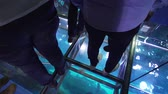 tloušťka : Dubai, UAE - April 09, 2018: People stand on the glass floor and watch the fish under their feet in the Aquarium in Dubai Mall stock footage video
