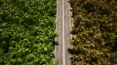 dálnice : Forest empty road aerial view 3d realistic footage