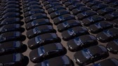 autolease : Black cars standing in rows on parking lot seamless footage