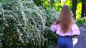 długi : Teenager girl in pink shirt, blue jeans and sunglasses walking near the flowering bush at sunset, turned back to see and go away.