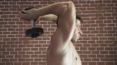 Concentrated topless bodybuilder doing exercise on triceps with dumbbells over brick wall background.