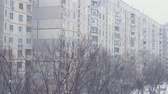 снегопад : romantic snow fall scenery in urban cityscape environment. cold weather season. 4k