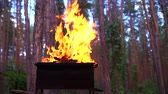 huni : Fire in barbecue, kindling flame and conical fire burning apparatus. Slow motion.