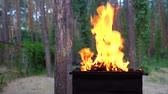 grelhar : Fire in barbecue, kindling flame and conical fire burning apparatus. Slow motion.