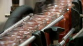 przetwory : food industry conveyor belt close-up